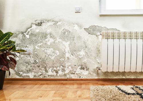 Các bước xử lý chống thấm cho nhà xuống cấp-1